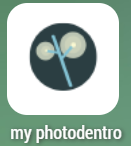 myPhotodentro Icon